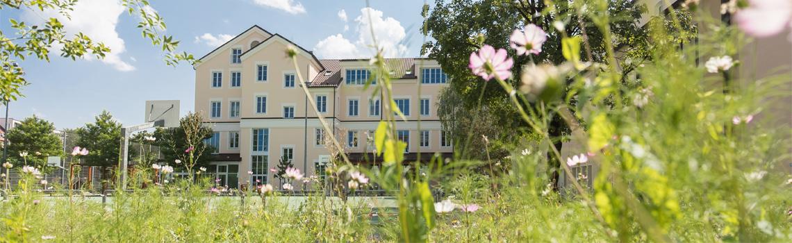 Blumenwiese auf dem Campus Don Bosco in München
